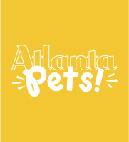 Atlanta Magazine Pet Issue | Cord Shoes and Boots